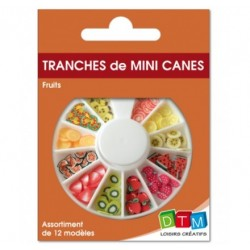 Tranches de mini canes fruits DTM